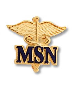 01-77-2020 Master of Science Nursing Pin