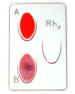 02-19-0022 Simulated ABO Blood-Typing Kit