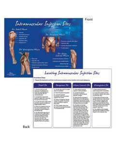 09-31-0697 Nasco Intramuscular Injection Sites TearPad™