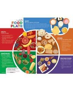 09-31-4448 US Food Plate Handouts