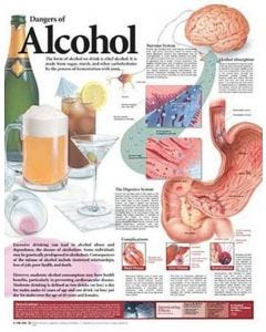 09-31-9696 Dangers of Alcohol Chart