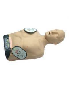 11-81-2207 Sherpa X Smart CPR Training Model