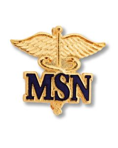 Master of Science Nursing Pin