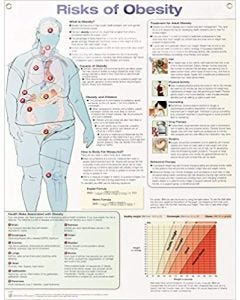 09-31-4737 Risks of Obesity Chart