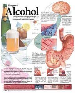 09-31-9696 Dangers of Alcohol Chart