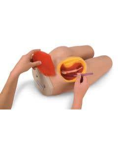 11-81-0961 Nasco Life/form® Intramuscular Injection Simulator